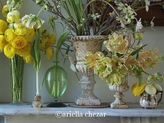 Flowers by Ariella Chezar 3
