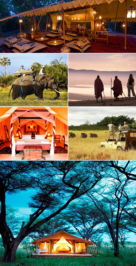 safari honeymoon, adventure honemoon