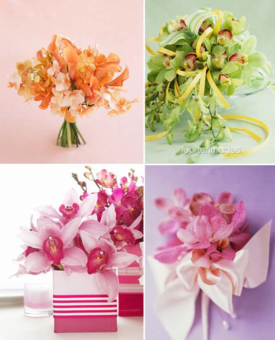 year-round wedding flowers: cut orchids