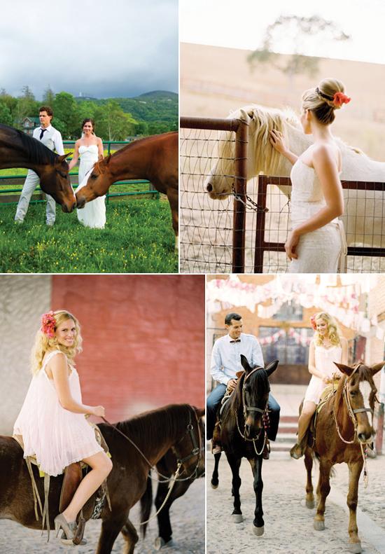 horses in wedding photos