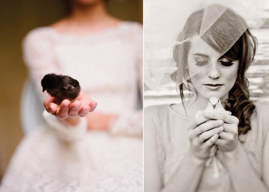 birds in wedding portrait