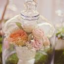 Romantic_Rose_Garden_Excerpt