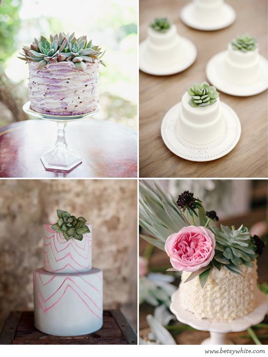 Sweet Succulent Cakes