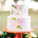 Painted Cakes_Excerpt