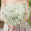 Bountiful Baby's Breath_Excerpt