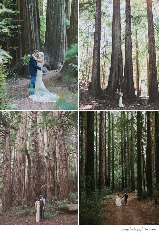 Romantic Redwood Vows