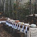 Woodland Thanksgiving Nuptials_Excerpt