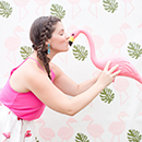 FlamingoFun_Excerpt